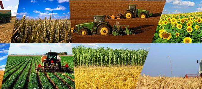 Agricultura Slider 11