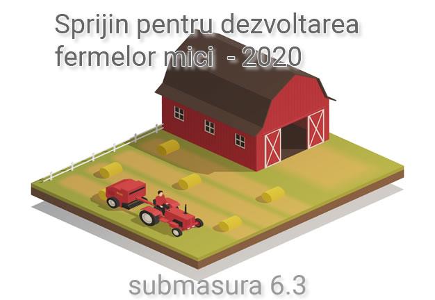 dezvoltarea fermelor mici – submasura 6.3.