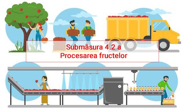 Submăsura 4.2 - Procesarea fructelor Fonduri europene Bistrita